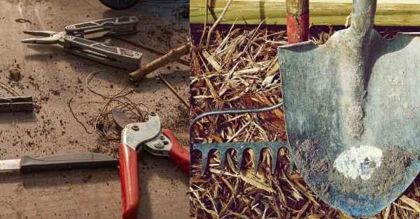 """Small Stainless Steel Transplanting Seedlings Tools,9/"""""""