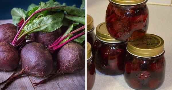how to preserve beets
