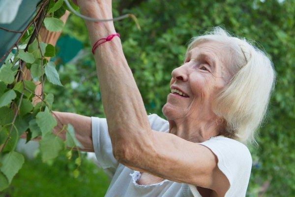 lady gardening in the sun
