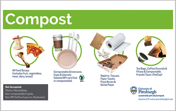 Compostable Collection at Pitt