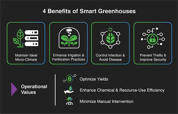 greenhouse benefits illustration