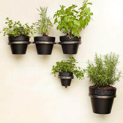 Plant Holder Brackets