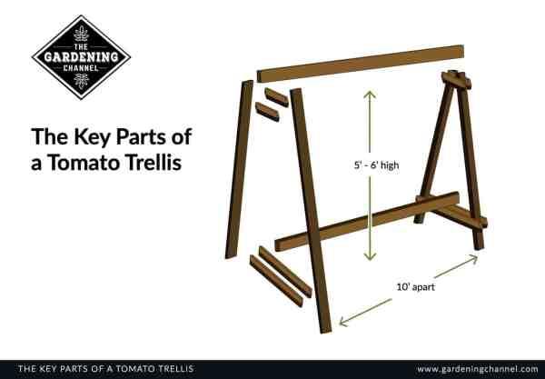 Key Parts tomato trellis