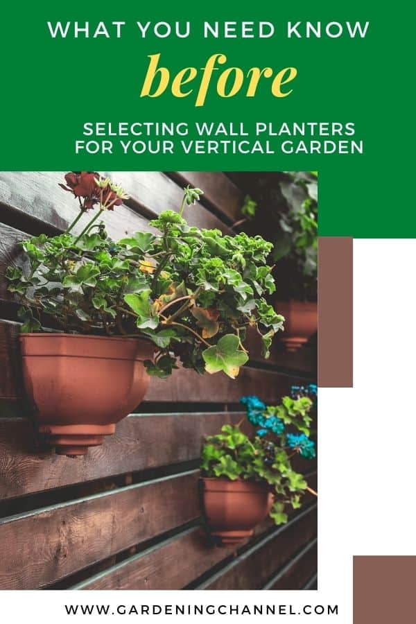 planters on wall with text overlay what you need to know before selecting wall planters for your vertical garden