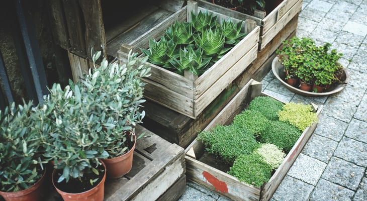 Small Patio Ideas Your Official Guide To Small Space Gardening