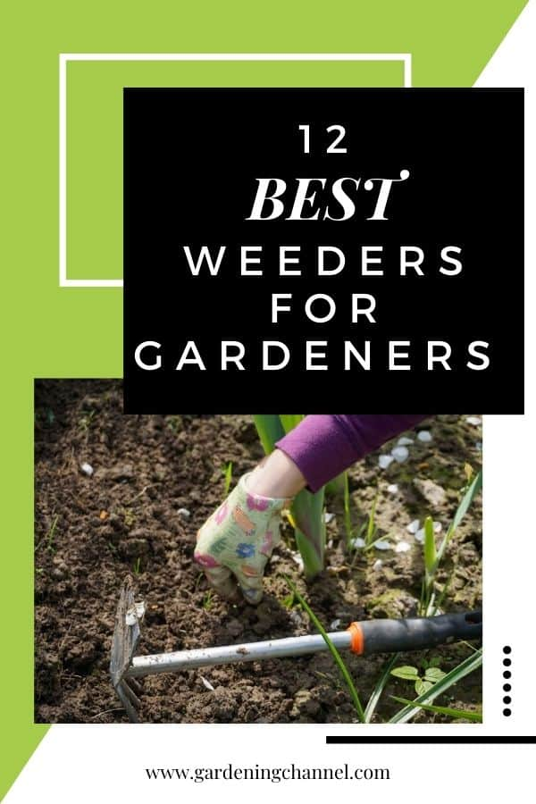 weeding tool with text overlay twelve best weeders for gardeners