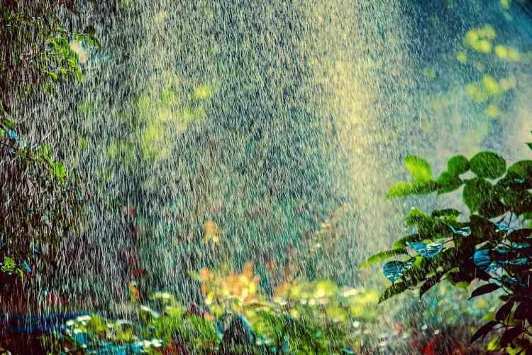 sprinkler system spraying water