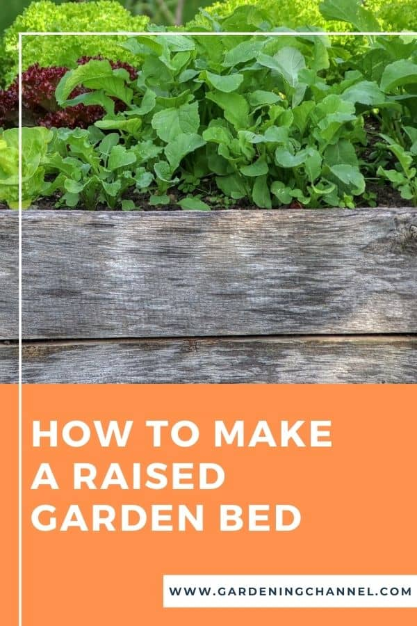 salad garden in raised bed with text overlay how to make a raised garden bed