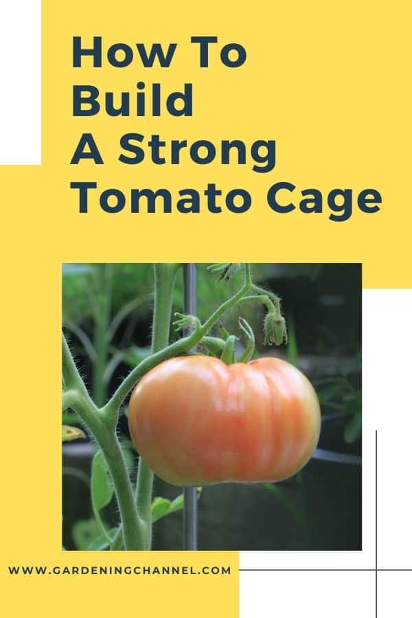 tomato plant with tomato support with text overlay how to build a strong tomato cage