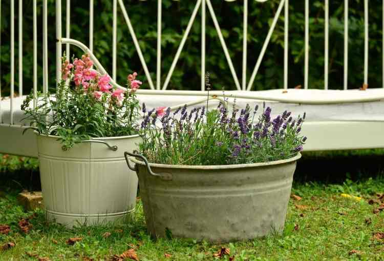 flowers growing in galvanized steel containers