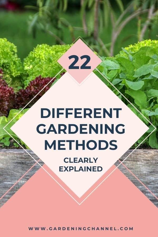 raised bed vegetable garden with text overlay twenty two different gardening methods clearly explained