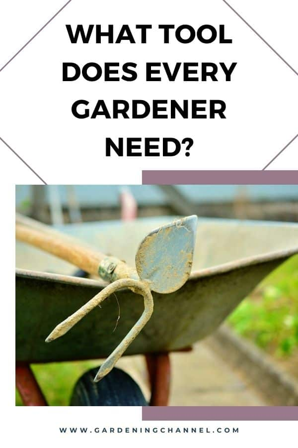 garden hoe and wheelbarrow with text overlay What tool does every gardener need?