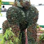 Gorilla made from plants at Gardening Scotland