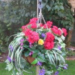 Hanging basket anti-theft clamp