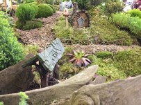 A miniature fairy world