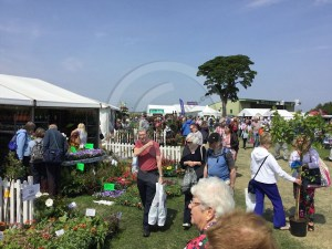 Visitors at Gardening Scotland 2016