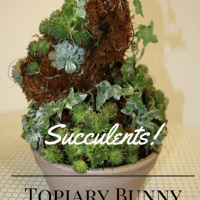 Topiary Bunny Tutorial