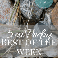 Five on Friday, March 24th
