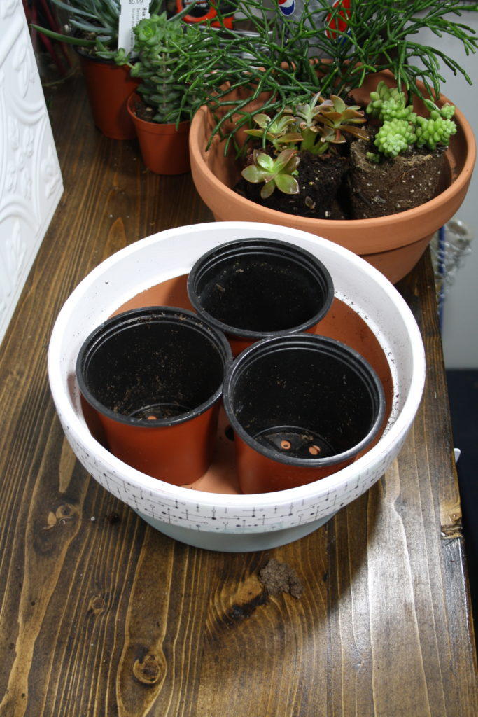Place empty pots in planter as space holders