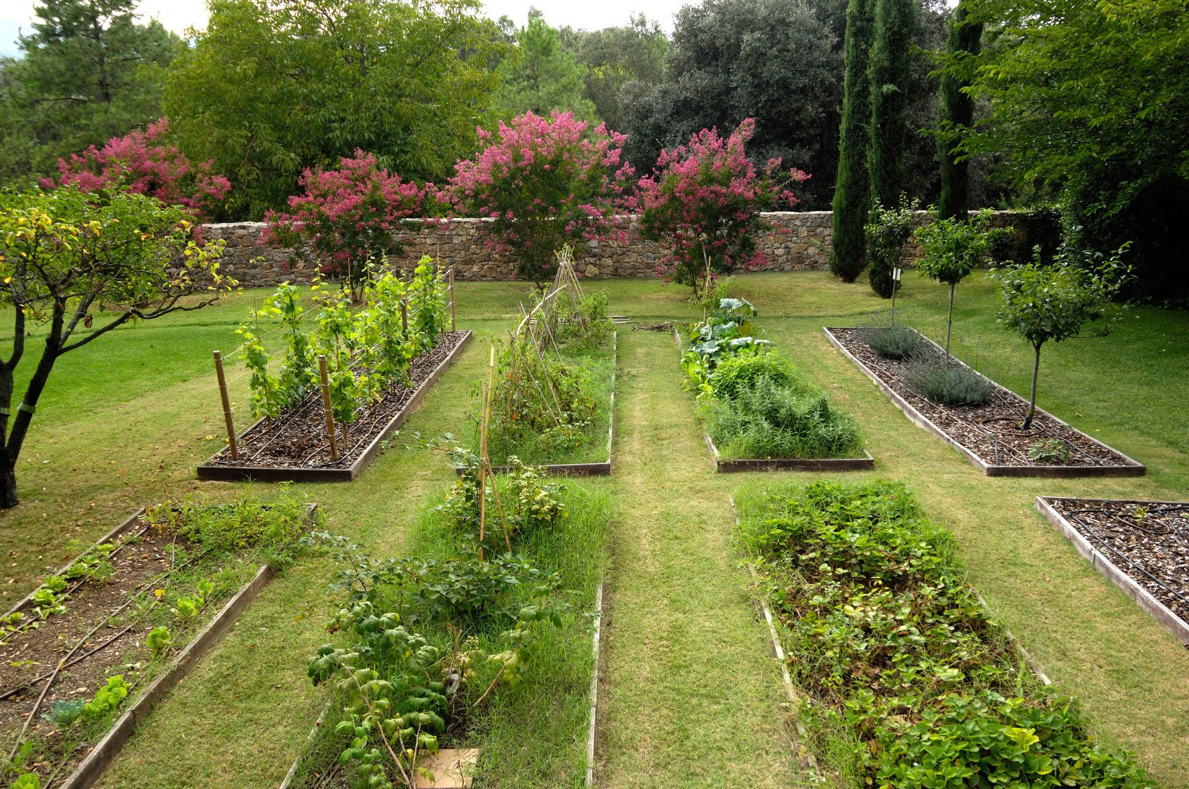 Tips On Choosing A Garden Location For Vegetables