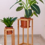 Stands For Houseplants How To Use An Indoor Plant Stand Effectively