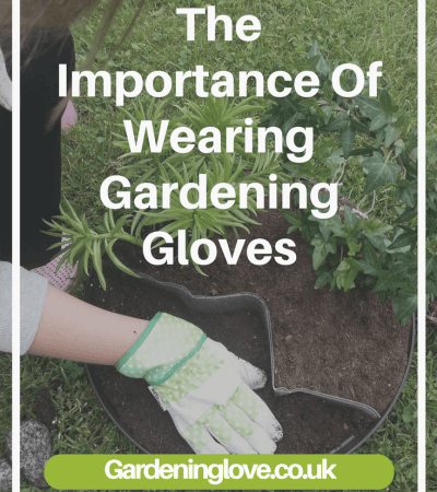 The importance of wearing Gardening gloves whilst gardening. #gardening #gardeningequipment #gardengloves #health