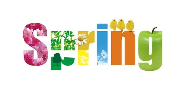 The word spring spelt out in different colours with a theme on each letter.