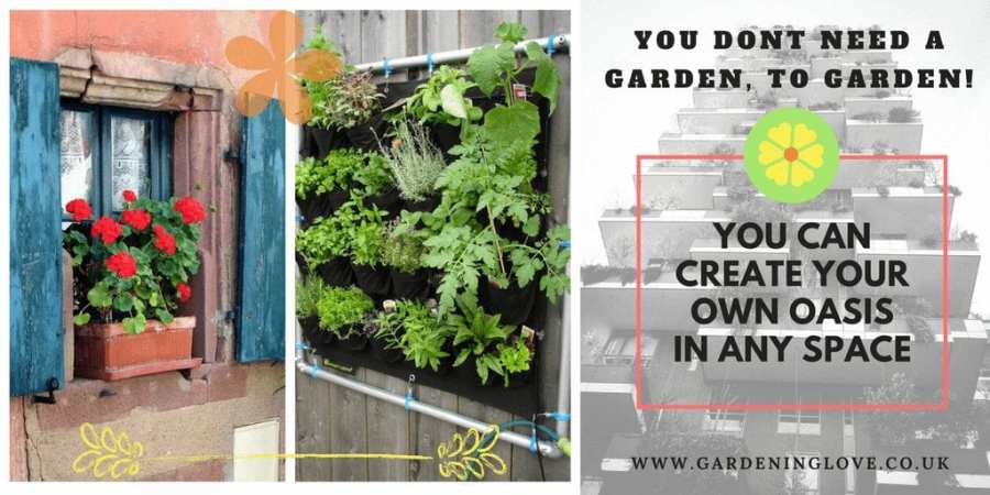 You dont need a garden to garden