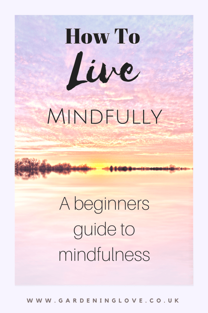How to live mindfully. A beginners guide to mindfulness
