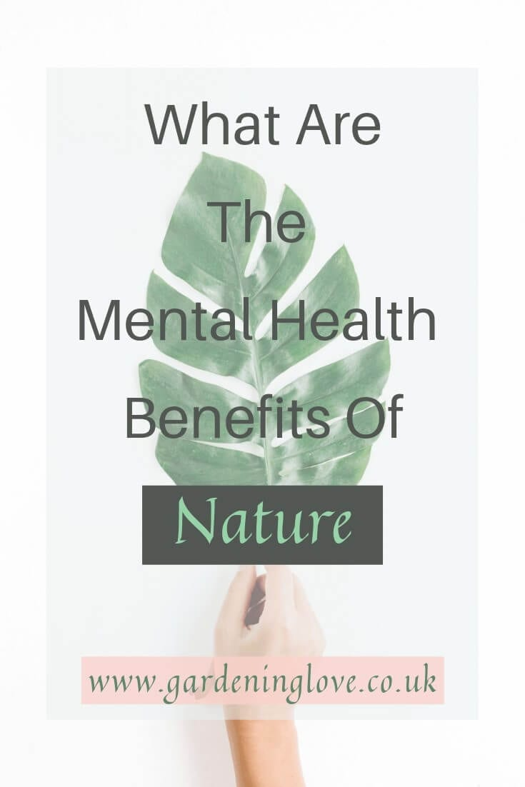 what are the mental health benefits of nature. Take a look at ow being in nature can positively influence mental health. #mentalhealth #nature #naturetherapy #mentalhealthhelp #mentalhealthtreatment #eco #ecotherapy #outdoors