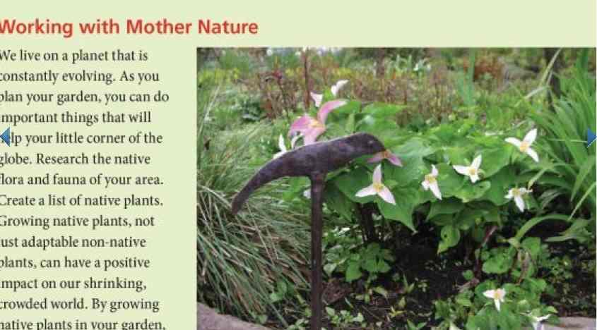 Understanding Garden Design by Vanessa Gardner Nagel