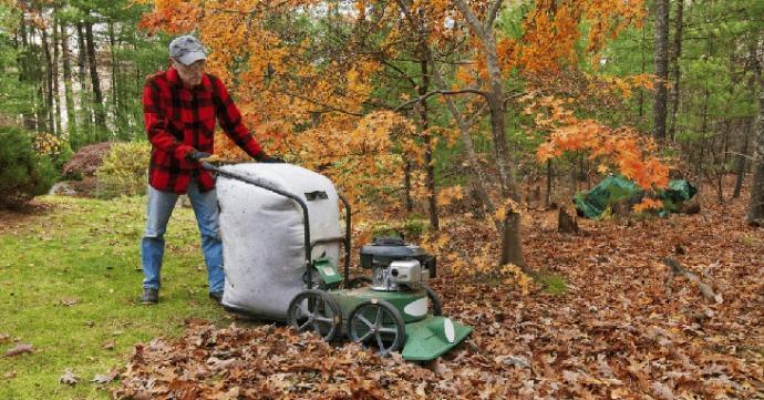 Best Garden Blower And Vacuum