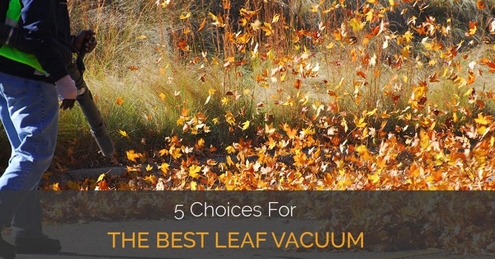 best-leaf-vacuum