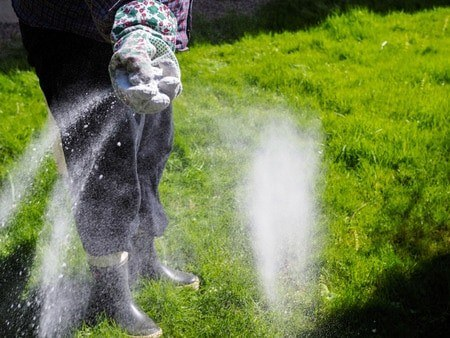 apply-fertilizer-to-your-lawn-1