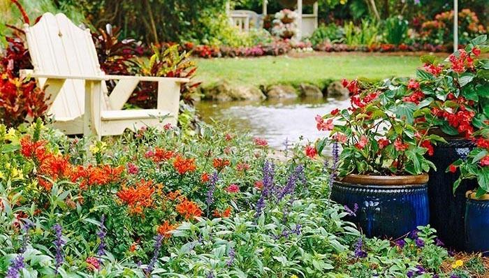 make-a-beautiful-garden-5