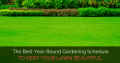 The Best Year-Round Gardening Schedule to Keep Your Lawn Beautiful