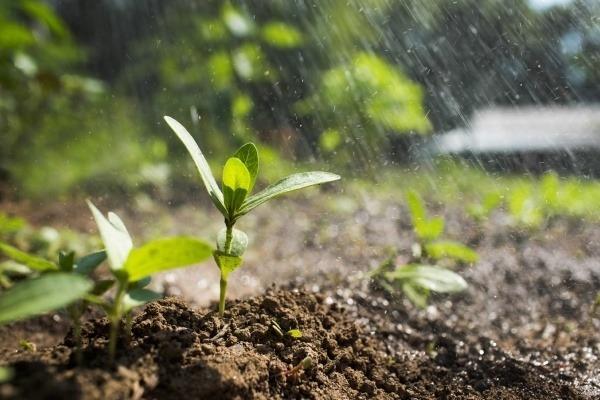 make-the-soil-better