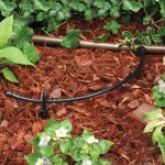 Rain Bird hose T22-250S Drip Irrigation hose Review