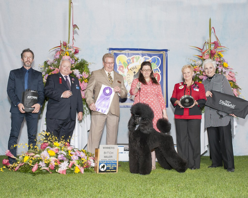 Alla WB PCA 2016 under judge Dana Plonkey, handled by Allison Cowie-Hardie