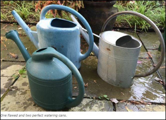 A Near-Miss in my Search for the Perfect Watering Can — GardenRant