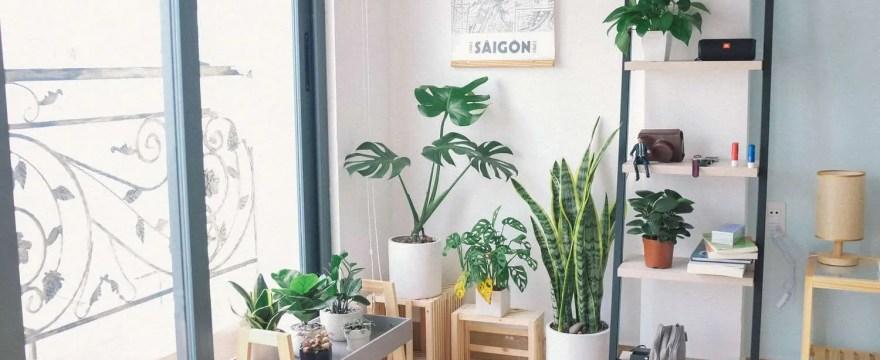 What is a Garden Room? Garden Building Types