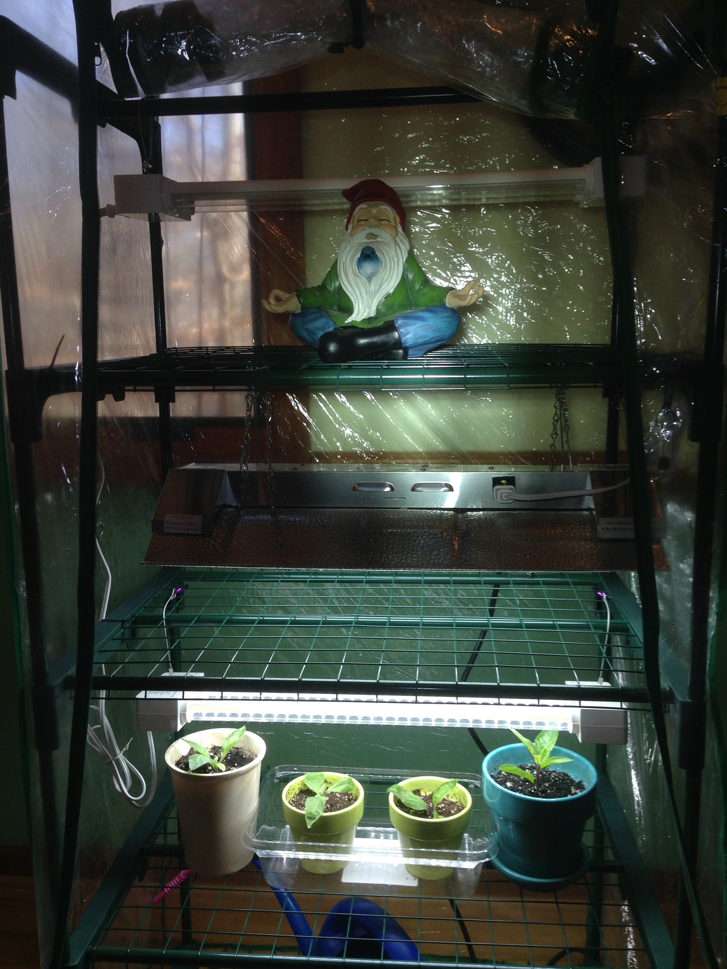 Indoor Greenhouse Garden For Seed Starting And More