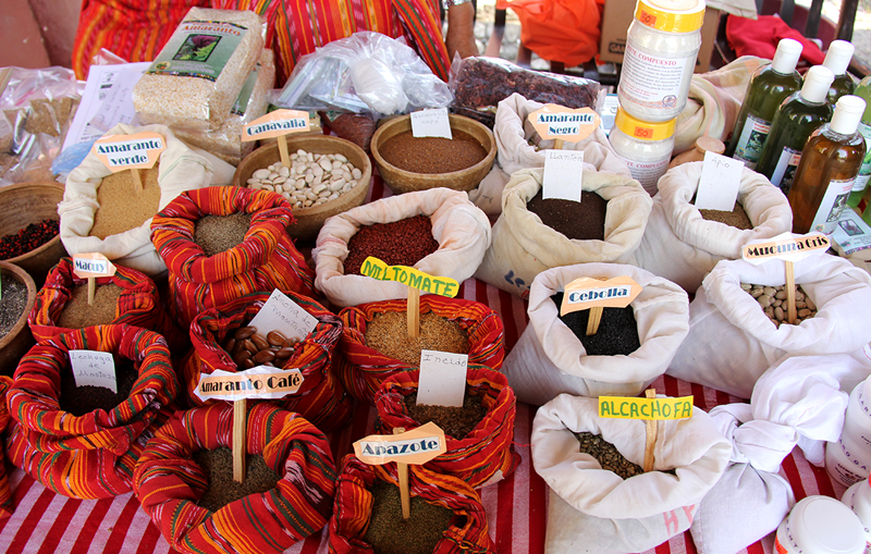 Traditional seed varieties at a seed fair in Guatemala.