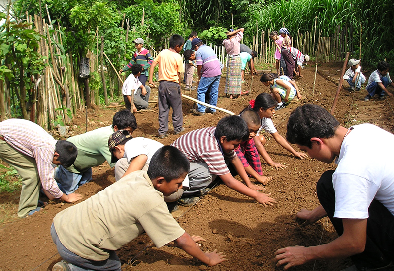 Students planting their school garden in Pichec, Guatemala.