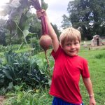 Checklist: Things To Do in the Garden in July