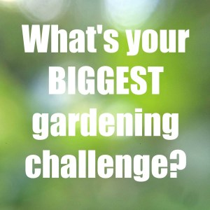 What's your biggest gardening challenge?