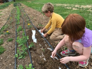 Planting seeds and a better future!