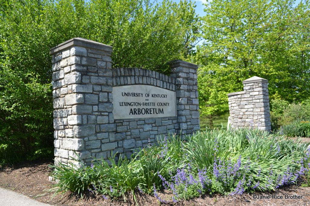 Lexington's (and the states) arboretum dates to 1991.