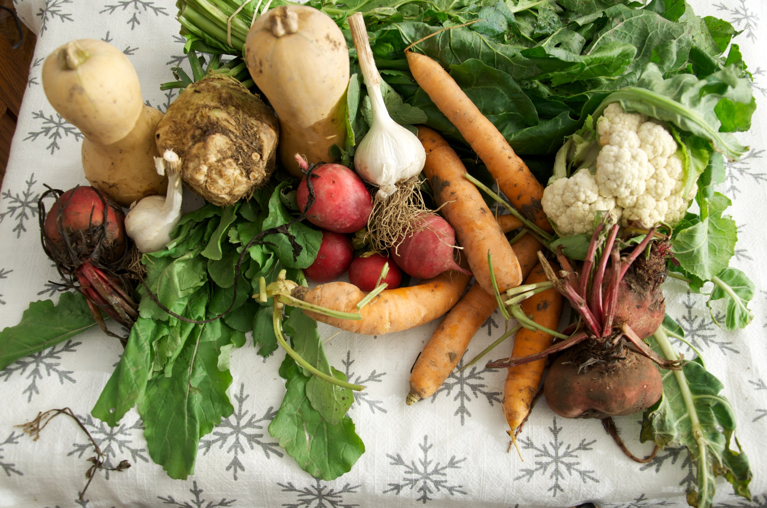 There are many vegetables to plants in fall to get one last harvest before winter.