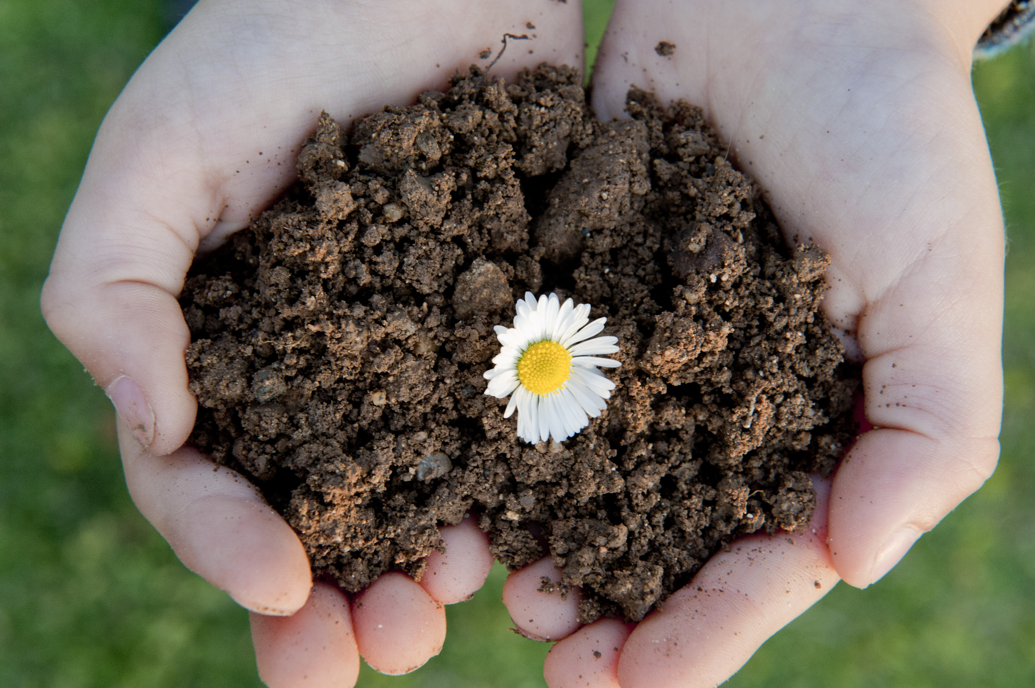 beginners guide to composting how to easily start composting today